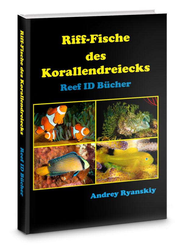 Riff-Fische des Korallendreiecks