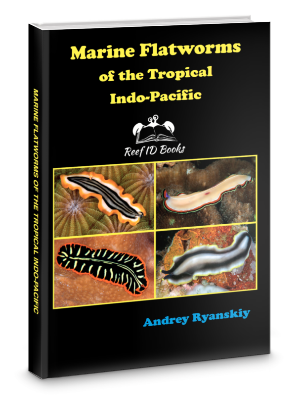 Marine Flatworms of the Tropical Indo-Pacific